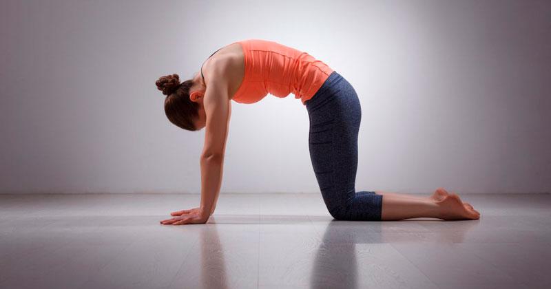 Йога для начинающих укрепление спины